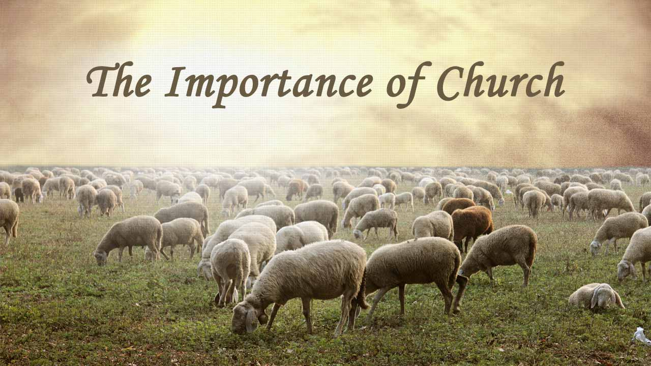 importance of church Bible verses about the importance of church the importance of church bible verses in the king james version (kjv) about the importance of church.