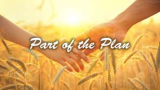Part of the Plan (Ruth 4)