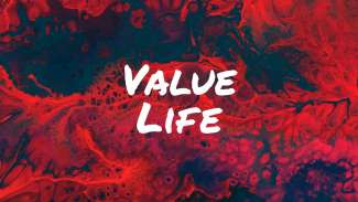 Value Life (Exodus 20:13)